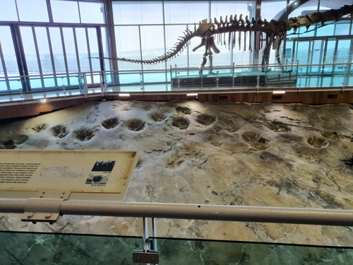 해남 우항리 공룡 화석지, 국가중요과학기술자료 등재