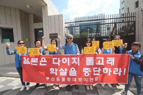 This undated file photo shows a South Korean civic organization's protest against the Taiji dolphin drive hunt. (Yonhap)
