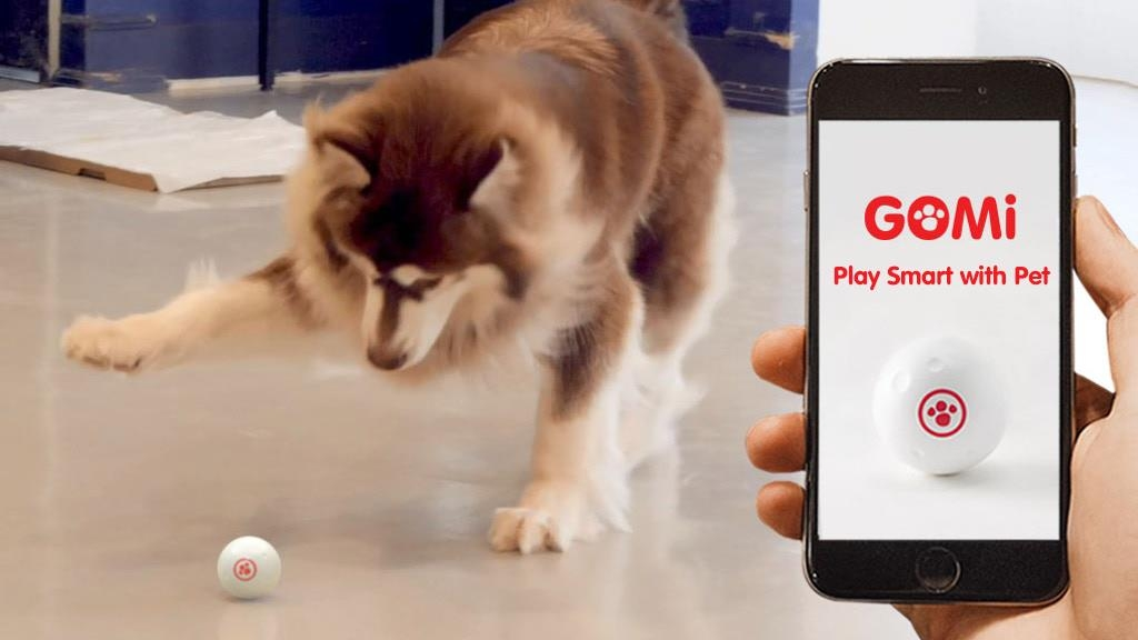 This photo, provided by GomiLabs, shows a dog playing with the Gomi Ball, an artificial intelligence (AI) pet toy. (Yonhap)