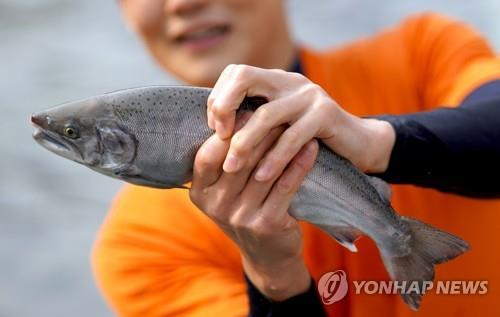 This photo provided by Hwacheon County Office shows a tourist showing off a mountain trout caught with his bare hands during an event of the 2020 Hwacheon Sancheoneo Ice Festival on Feb. 2, 2020. (PHOTO NOT FOR SALE) (Yonhap)