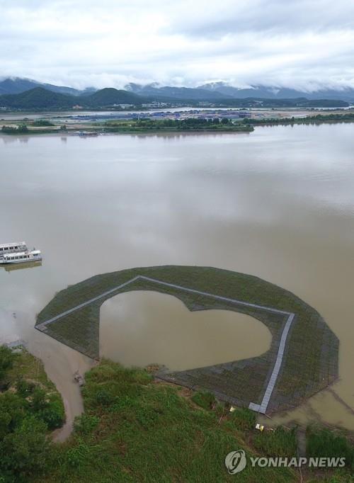 A heart-shaped artificial island made of water plants is moored at Uiam Lake in Chuncheon, 85 kilometers east of Seoul, on Aug. 11, 2020. This is one two artificial islands that the city built for tourism, with another one swept away by rapids amid days of heavy rain six days ago. (Yonhap)