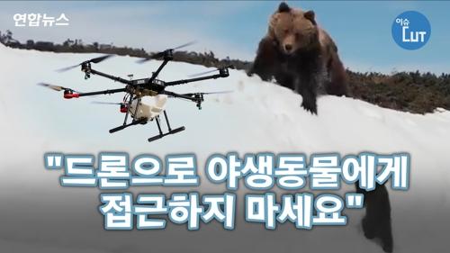 """[이슈 컷] """"드론으로 야생동물에게 접근하지 마세요""""1"""