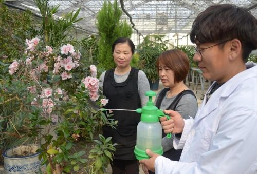 익산 식물병원