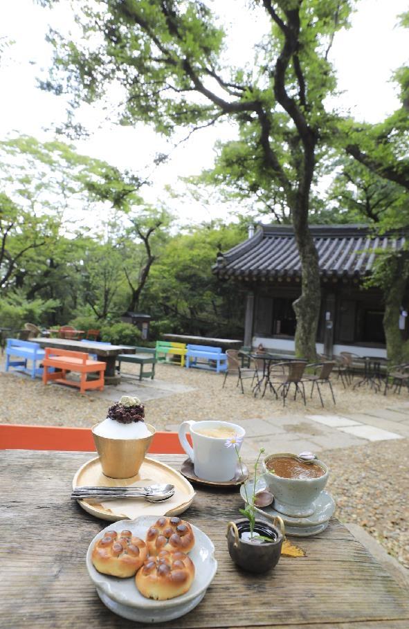 죽림다원에서는 연꿀빵과 전통차, 커피, 팥빙수 등을 즐길 수 있다. [사진/성연재 기자]