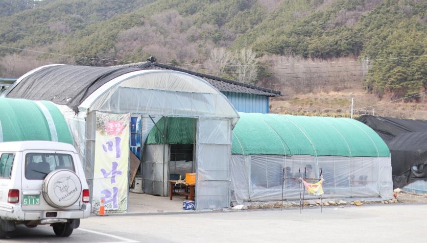 미나리를 현장에서 구워 먹을 수 있는 비닐하우스 [사진/성연재 기자]