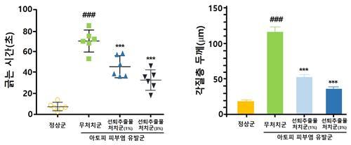선퇴 추출물 투여군의 가려움증과 각질층 두께 변화 실험