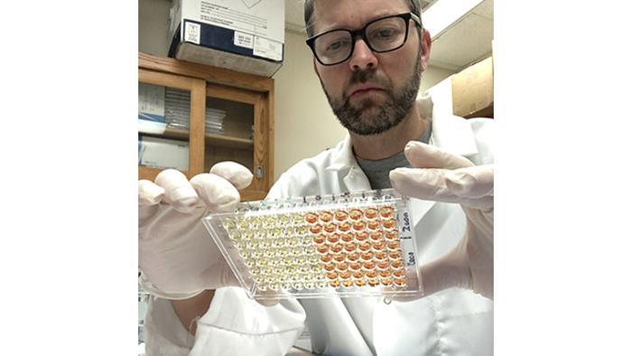 미국 노스웨스턴대 토머스 맥데이드 교수가 연구실에서 코로나19 바이러스(SARS-CoV-2) 항체 검사를 하고 있다. [Northwestern University 제공. 재판매 및 DB 금지]