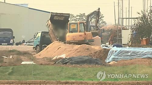 닭오리 살처분[연합뉴스 자료사진]