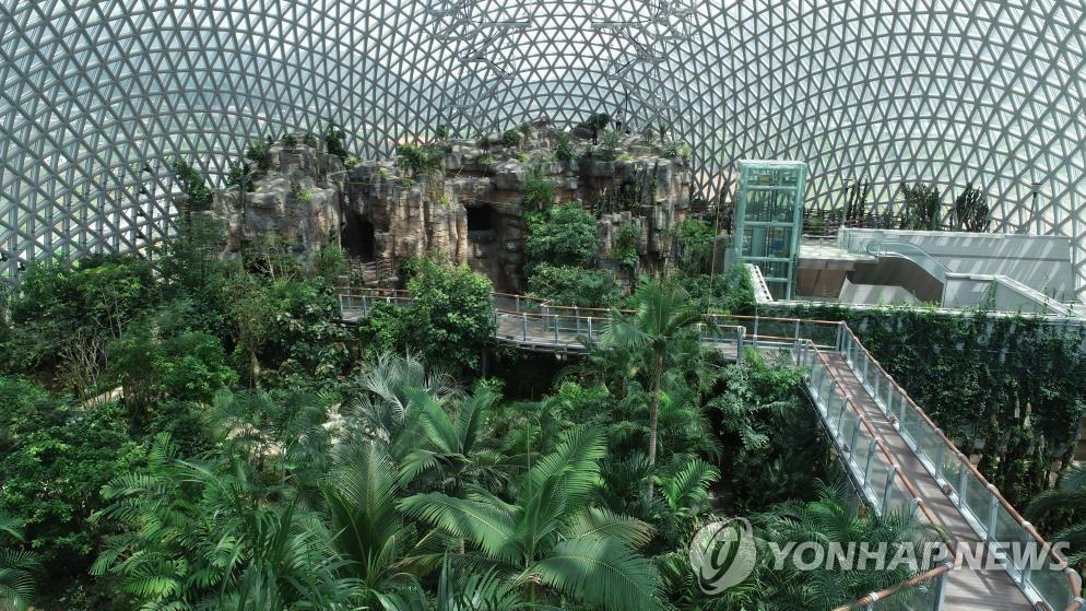 거제 정글 돔 내부