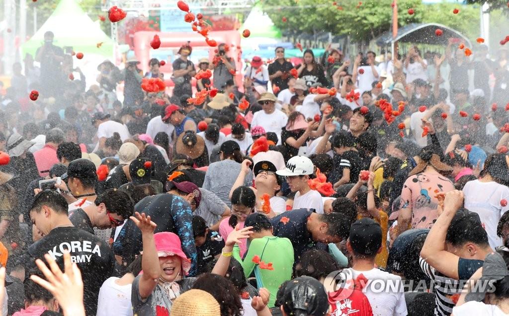 2019 화천토마토축제