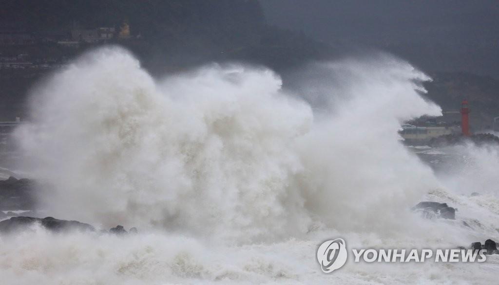 이달 초 제주도 해안가 덮치는 태풍 '미탁'의 위력