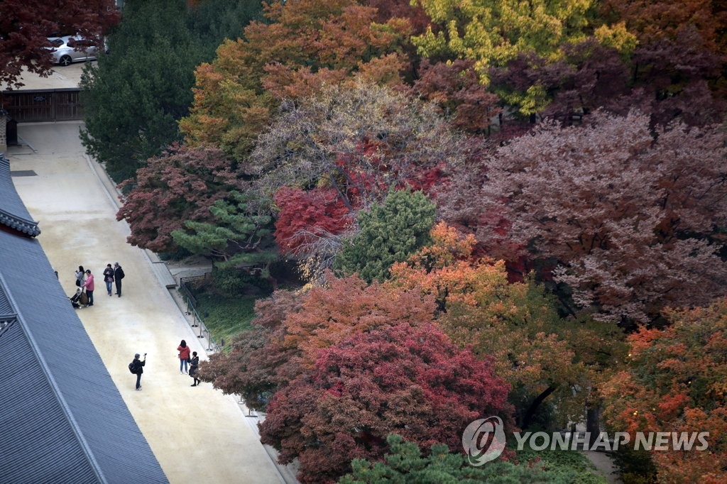 Autumn leaves at Seoul palace