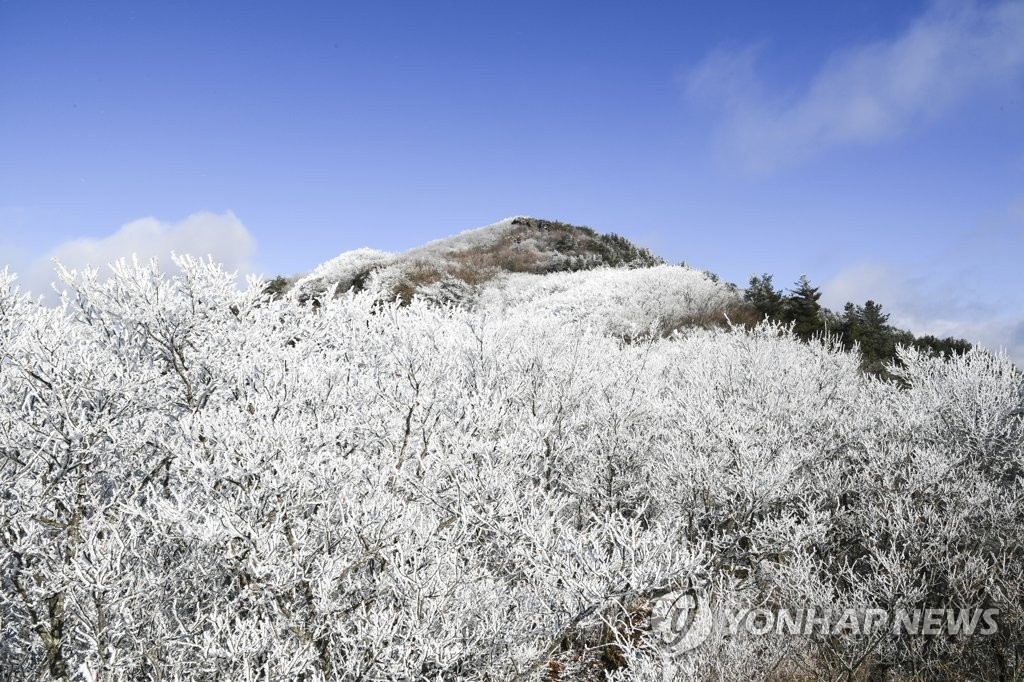 Hoarfrost on Mt. Jiri