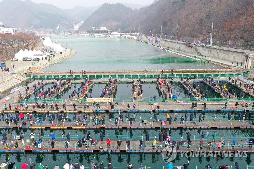 華川ヤマメ祭り受賞釣り場